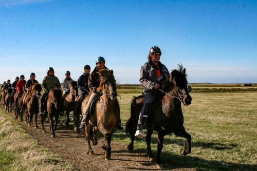 Dagstur på hesteryg