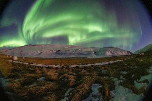 Nordlys om vinteren
