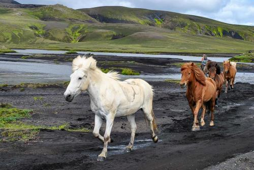 Rideferie i magiske Island